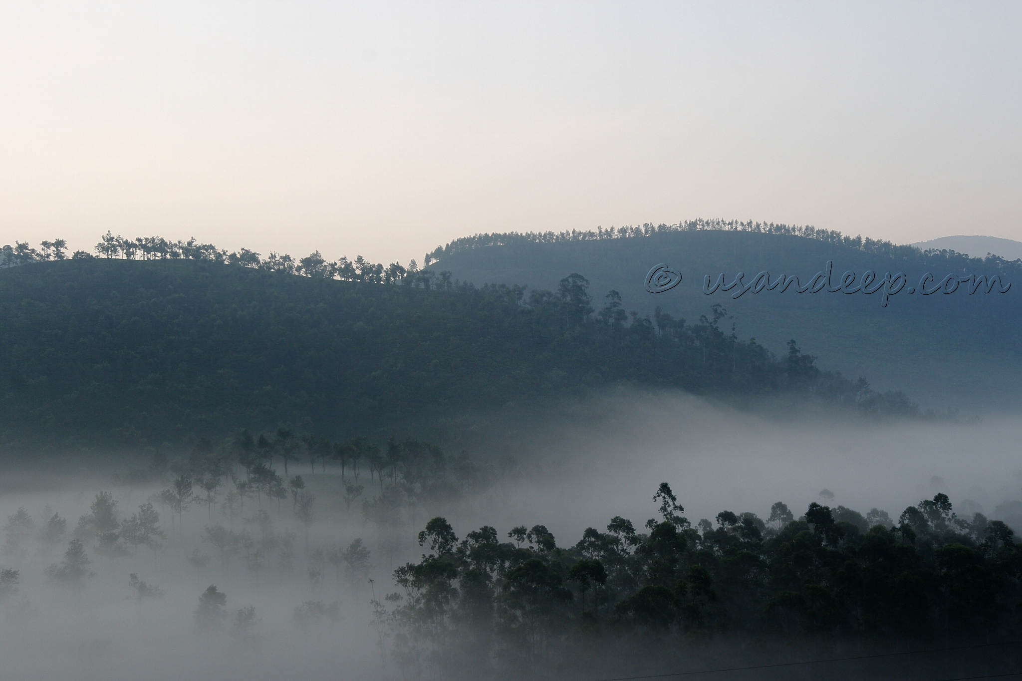 Misty valley near Valparai