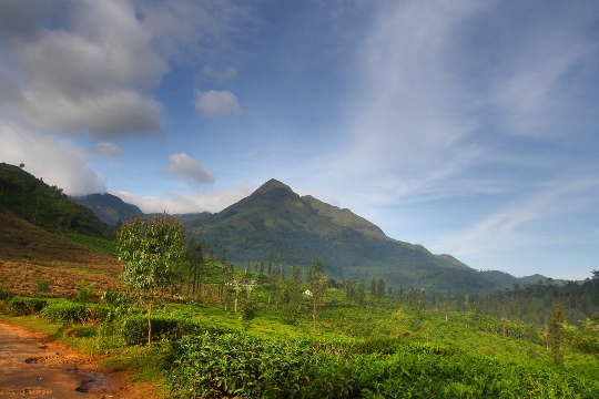 Chembra peak from foothills