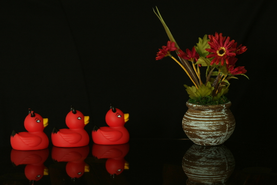 Rubber duckies and flower pot